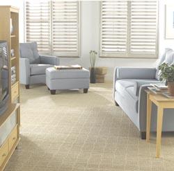 Carpet Flooring In Otsego Mn